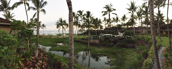 This is the view at dawn from our cabana at the Four Seasons Hualalai