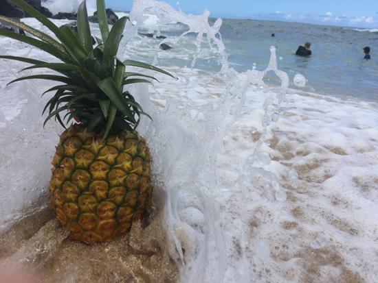 PineappleWaveWeb.jpg