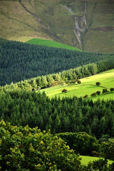 Wales-lines-and-hills-0910.jpg