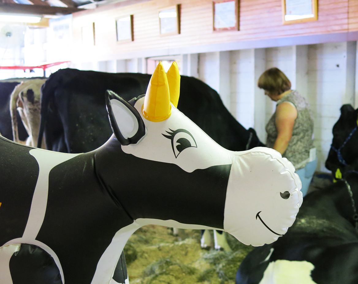 cow-imposter.jpg