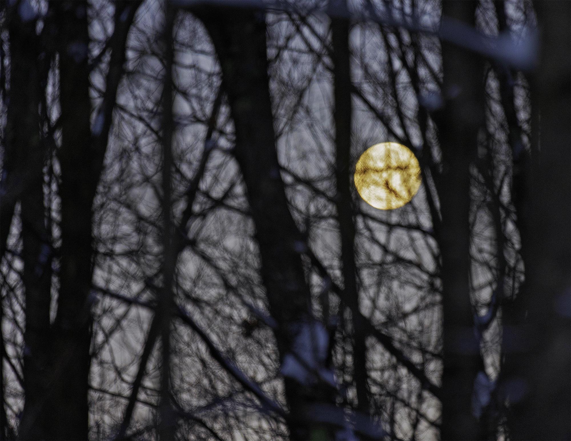 moon3-w.jpg