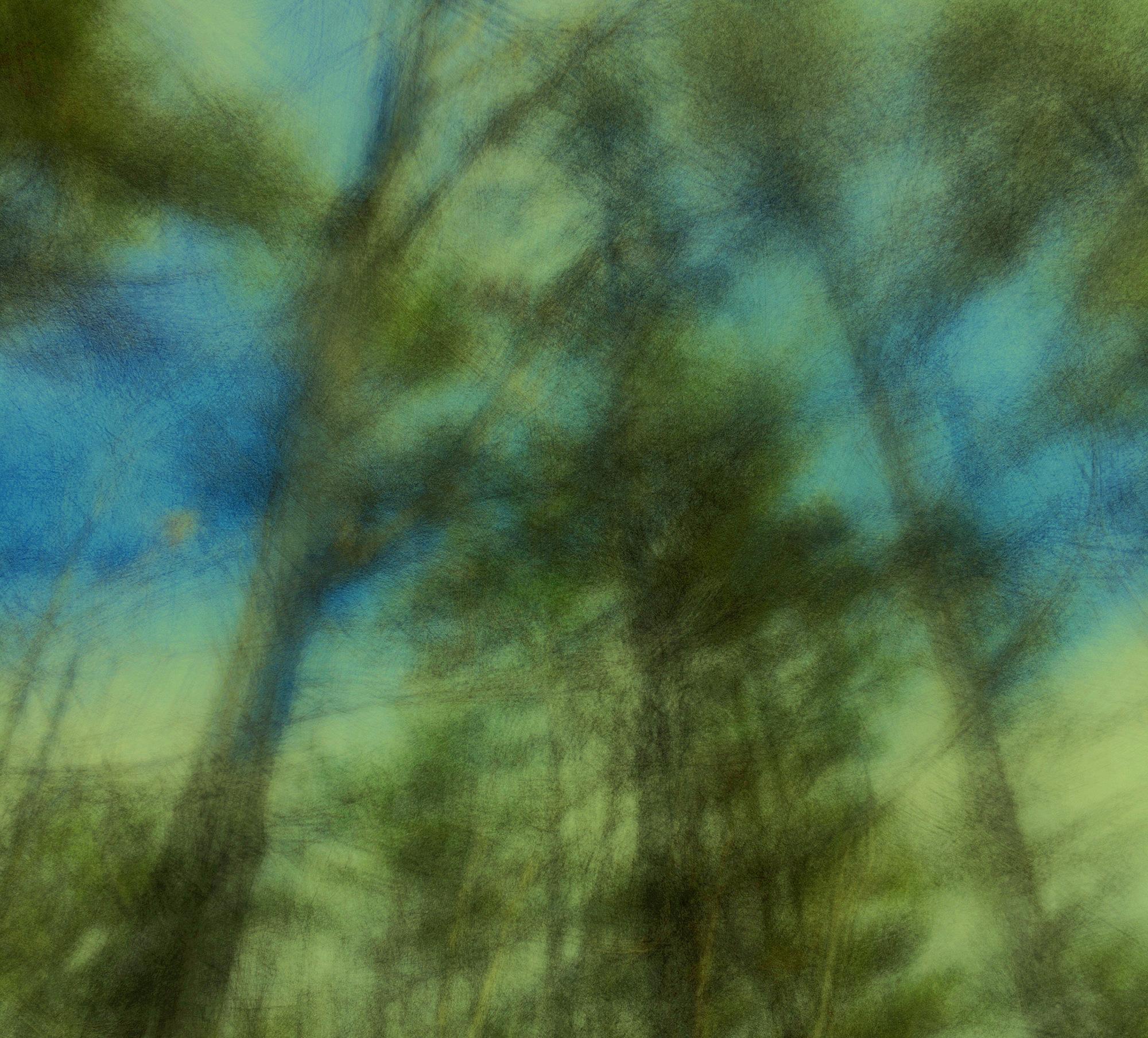 blurphoto.jpg
