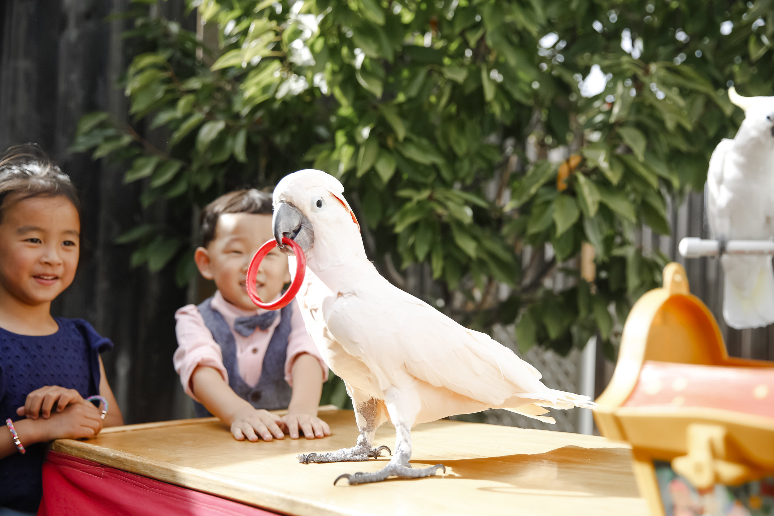 seojinbinbu5thbirthday-ahp-00171.jpg