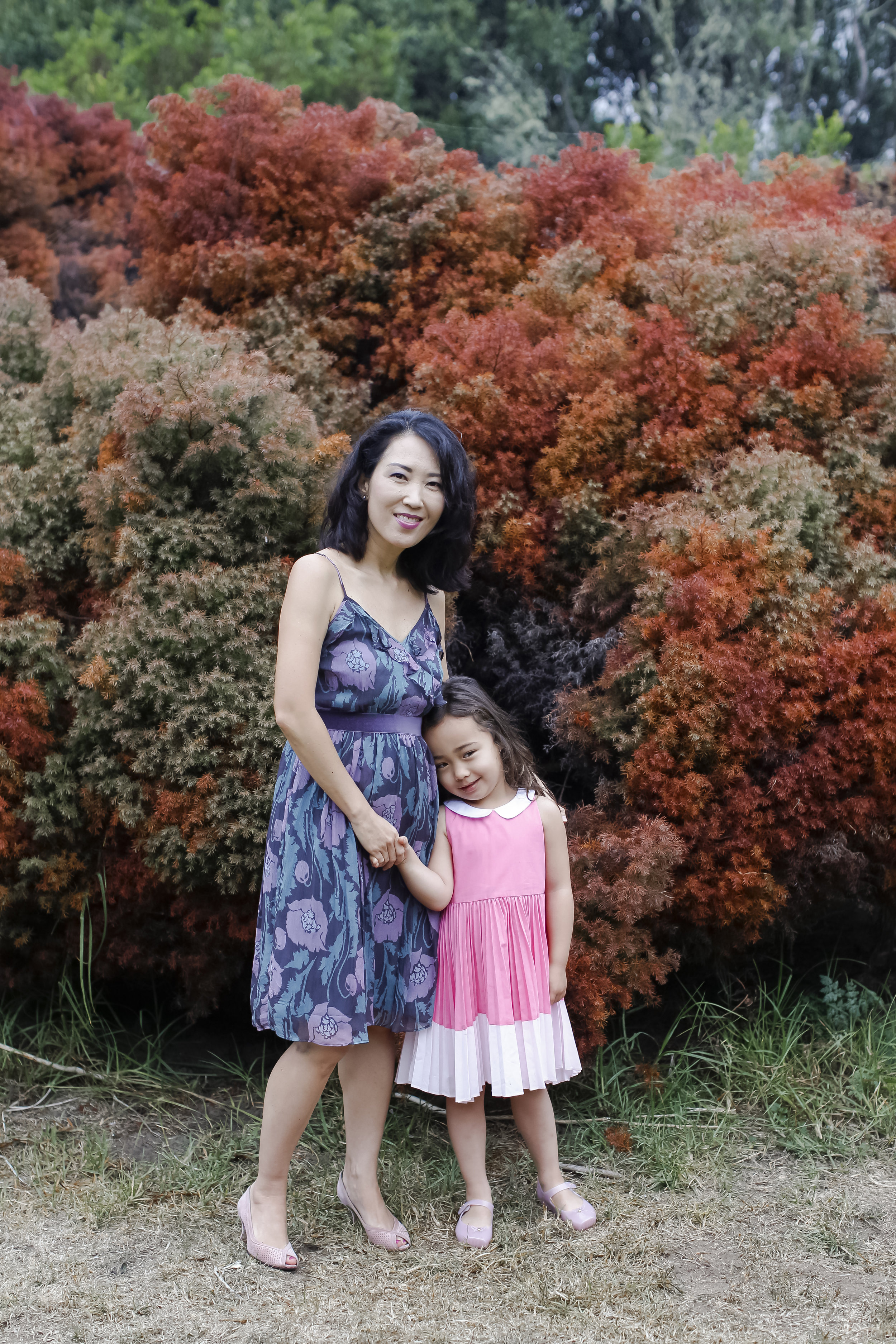 shinfamily-ahp-00024.jpg