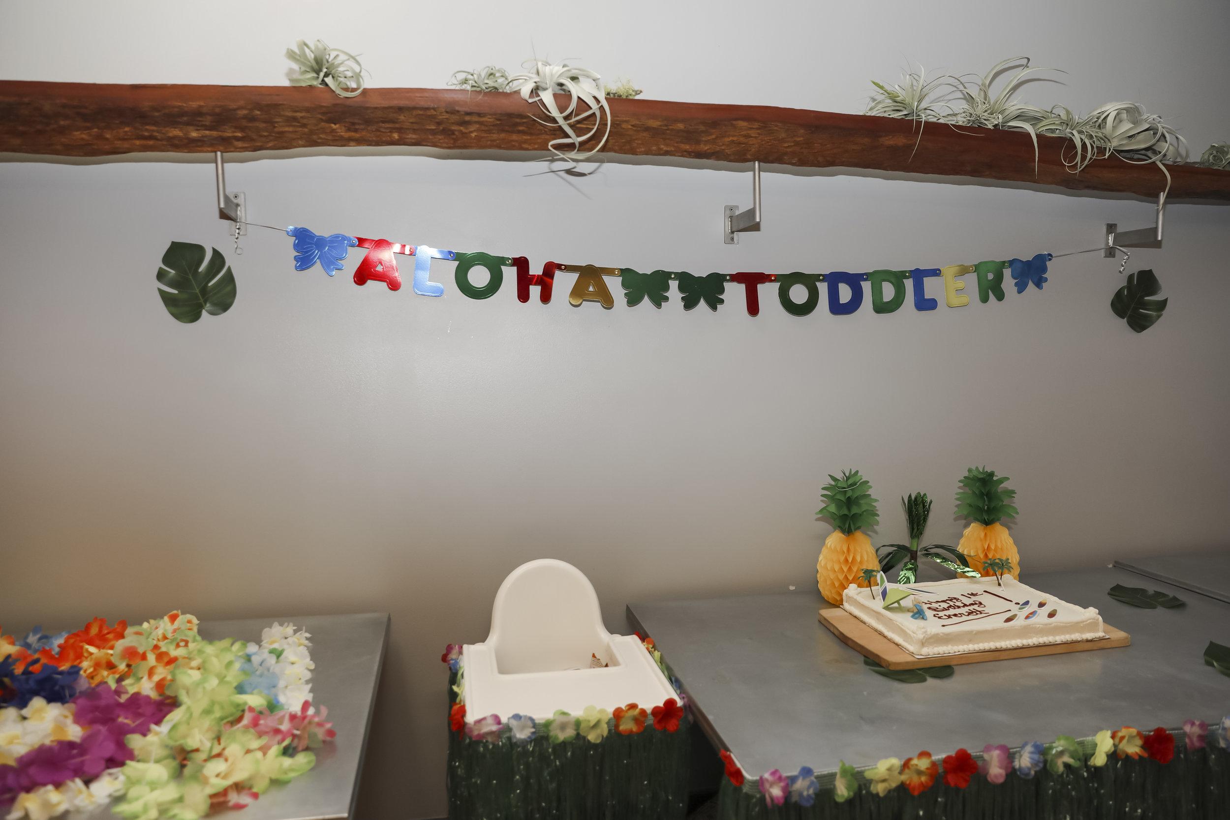 everett1stbirthday-ahp-00008.jpg