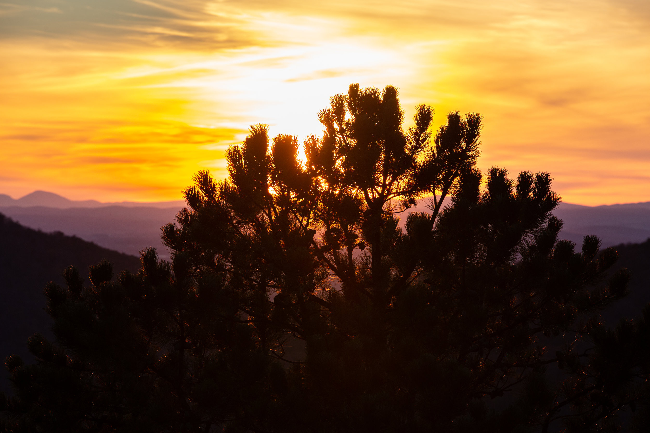 Shenandoah-National-Park-blue-ridge-parkway-day-mountains-afternoon-haze-layers-distance-texture-trees-fall-sunset-evening-pinetree-sunfalre-shadow-silhouette