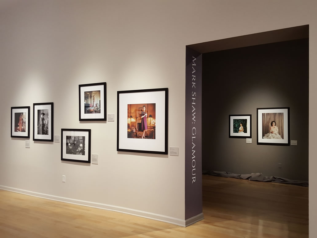 pvac-gallery-installation2.jpg