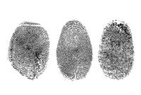 fingerprints.png