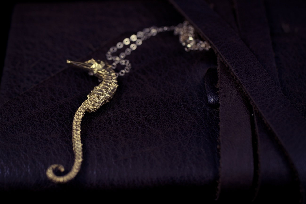 new Gold Vermeil seahorse pendant with 14K Gold chain