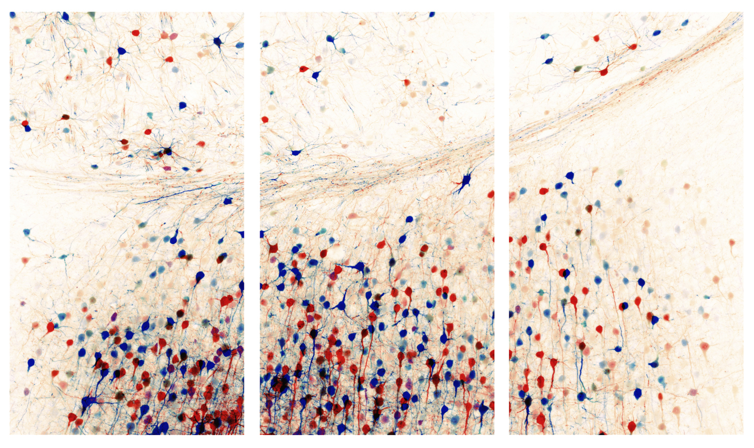 """""""In This Unfolding"""" Triptych, 3x 83x57cm panels"""