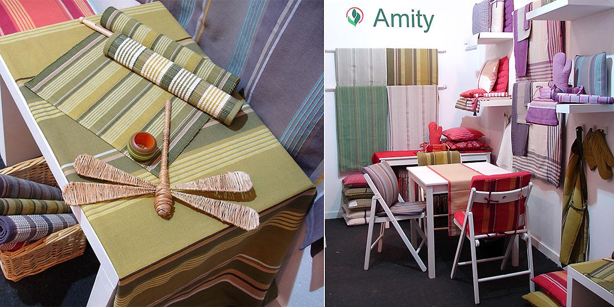 Amity International, 2009