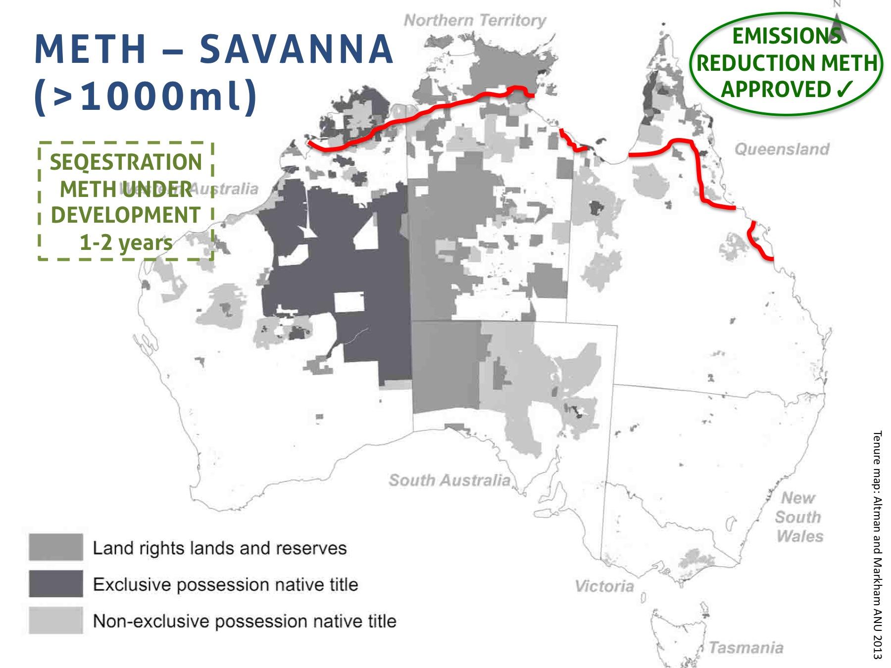 savanna 1000.jpg