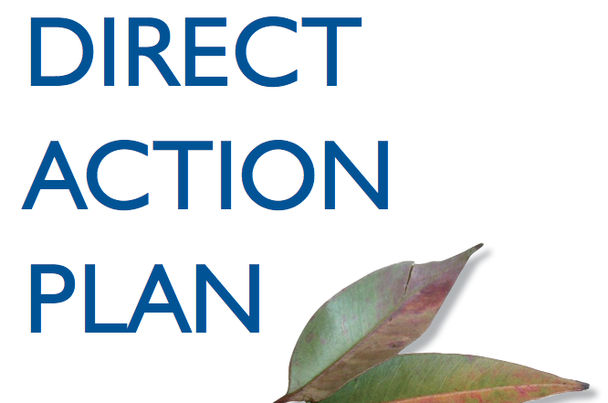 The Australian Government's Direct Action Plan