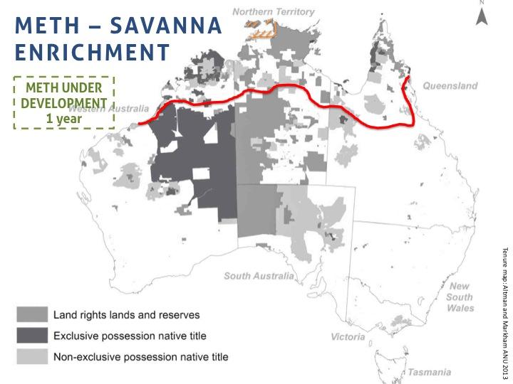 savanna enrichment.jpg