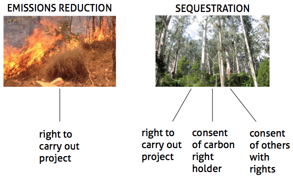 Land requirements for emissions reduction and carbon storage projects
