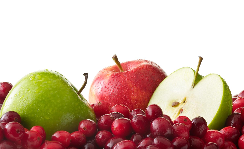 Apples and Cranberries | Tony Kubat Photography