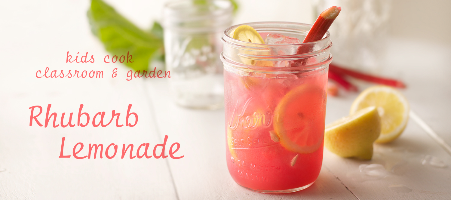 Rhubarb Lemonade | Tony Kubat Photography