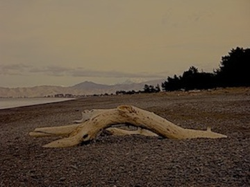 Walker, A.  Rarangi Beach, New Zealand , 2009