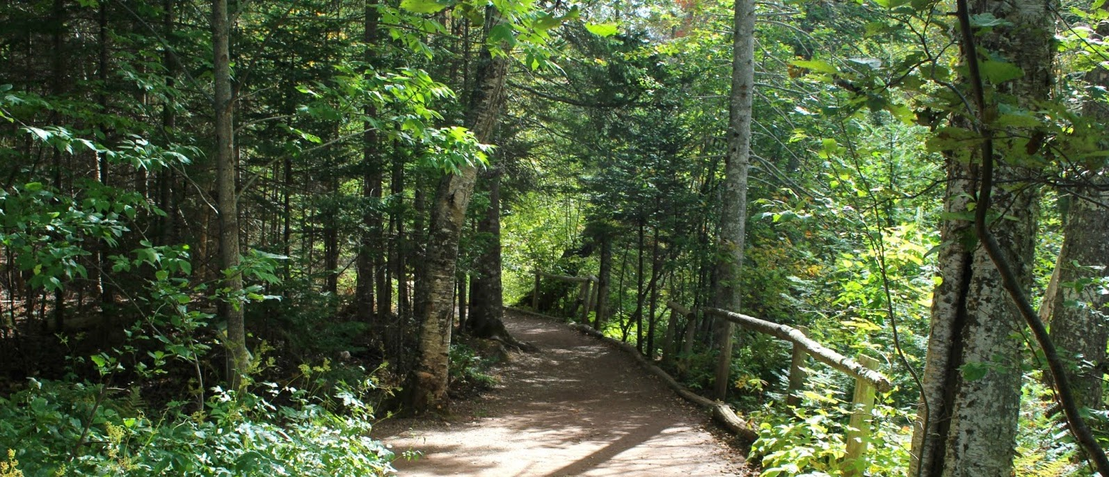 fathers day trails.jpg