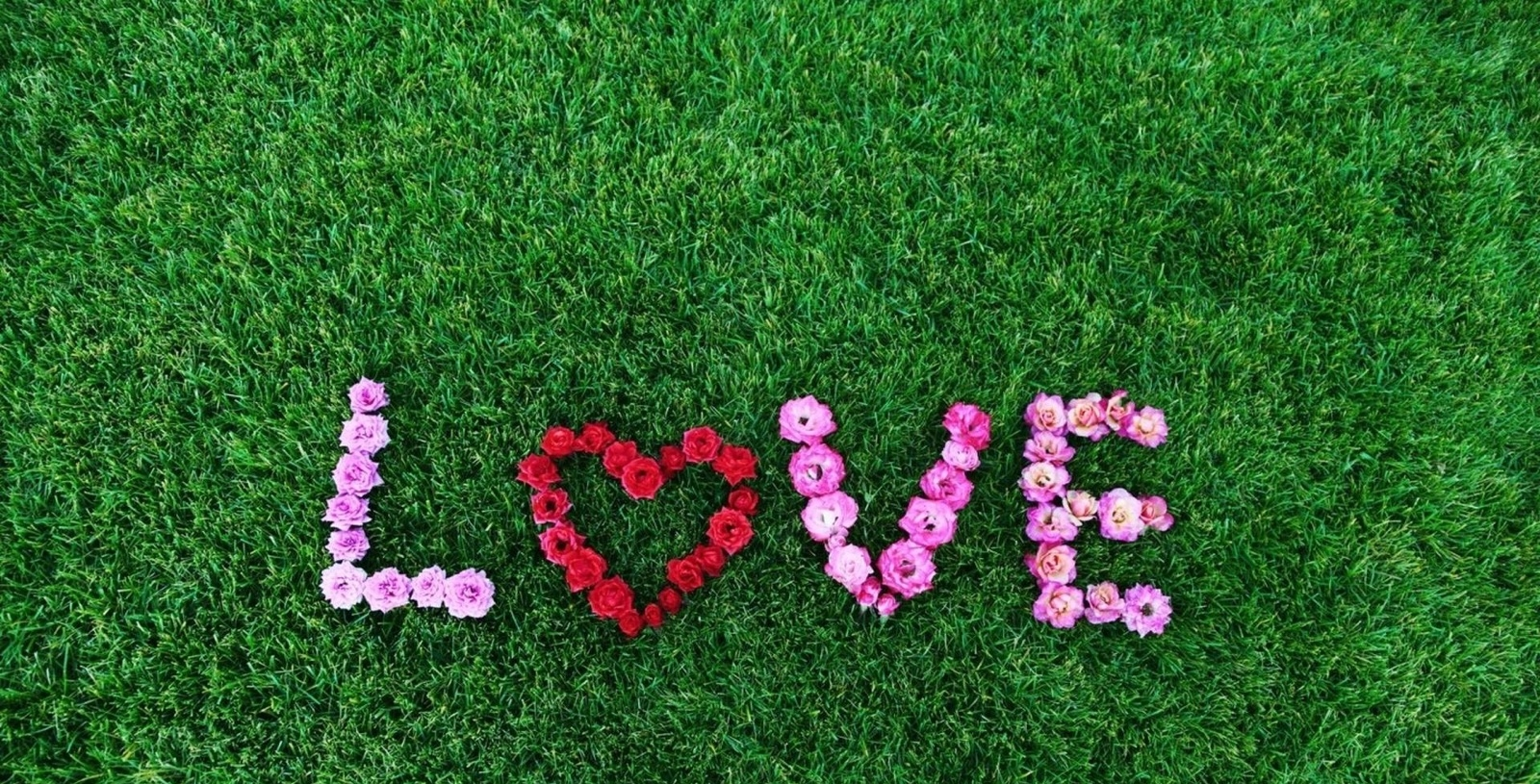 Love-written-by-flowers-on-green-grass.jpg.jpeg