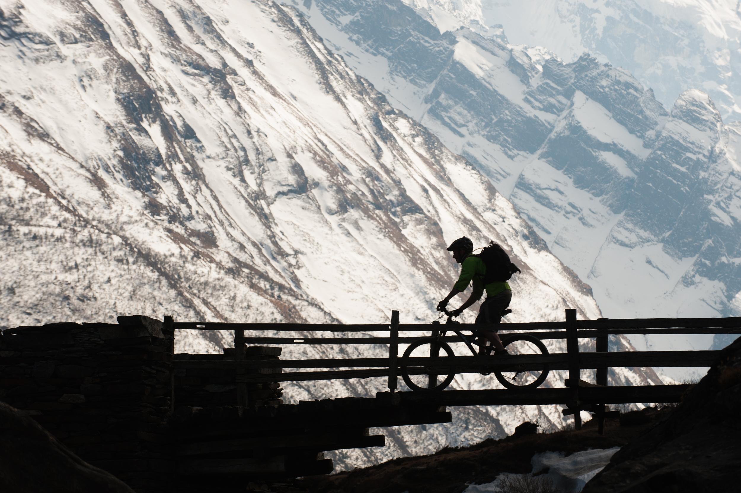 Bicycle silhouette _DSC9765.jpg