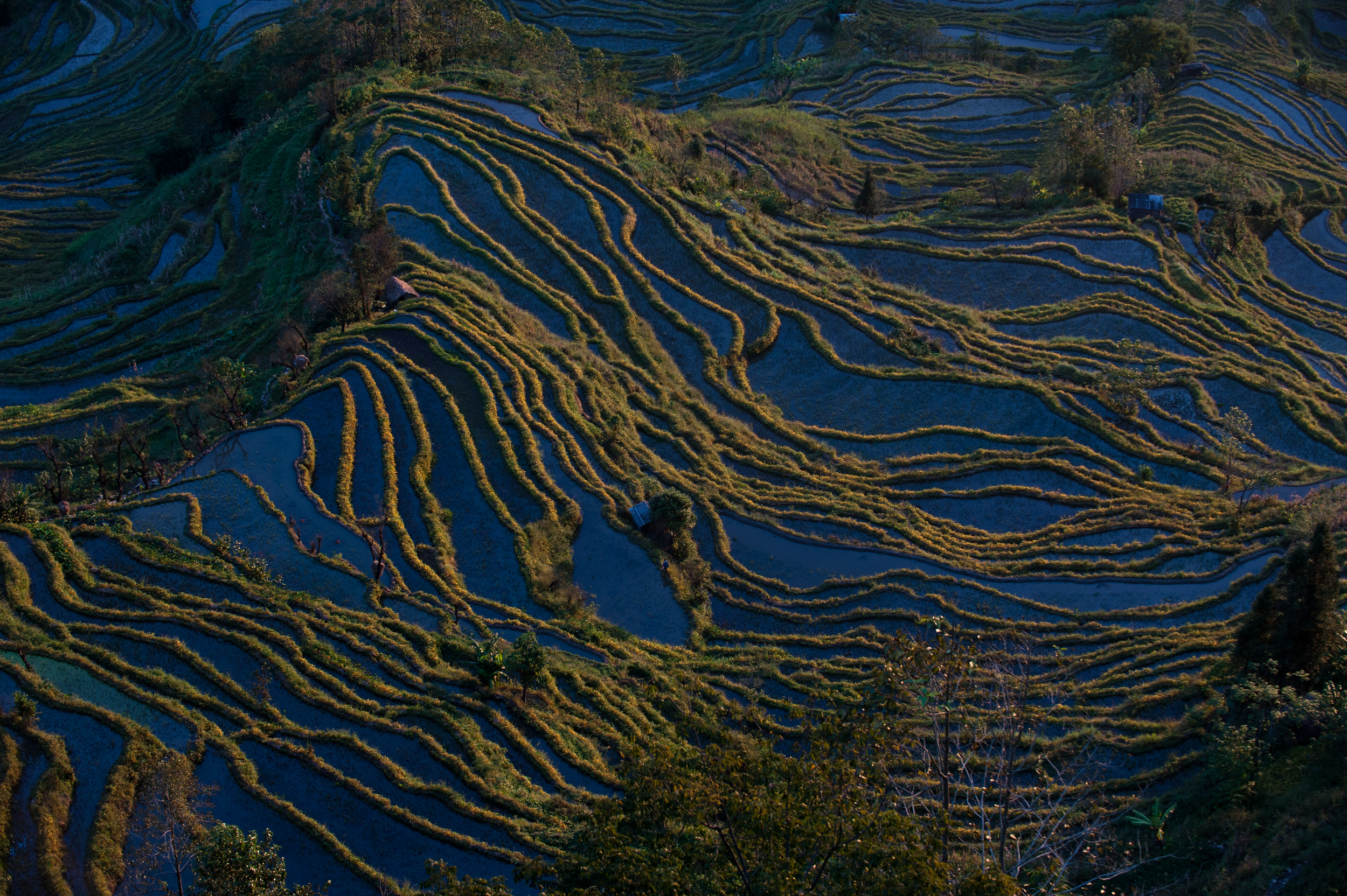 Yuanyang rice terraces _DSC7624.jpg