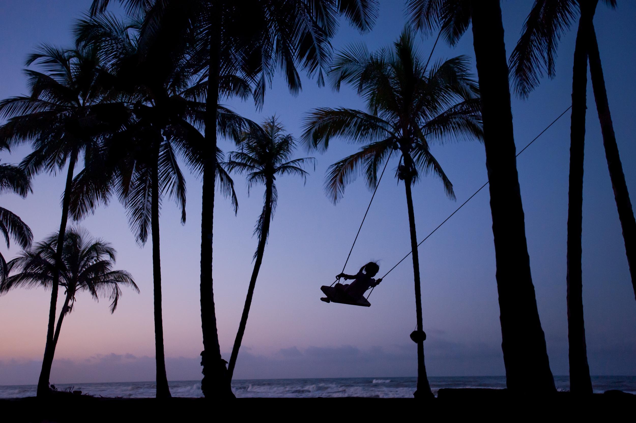 Swinging in the palms _DSC3270-Edit-2.jpg