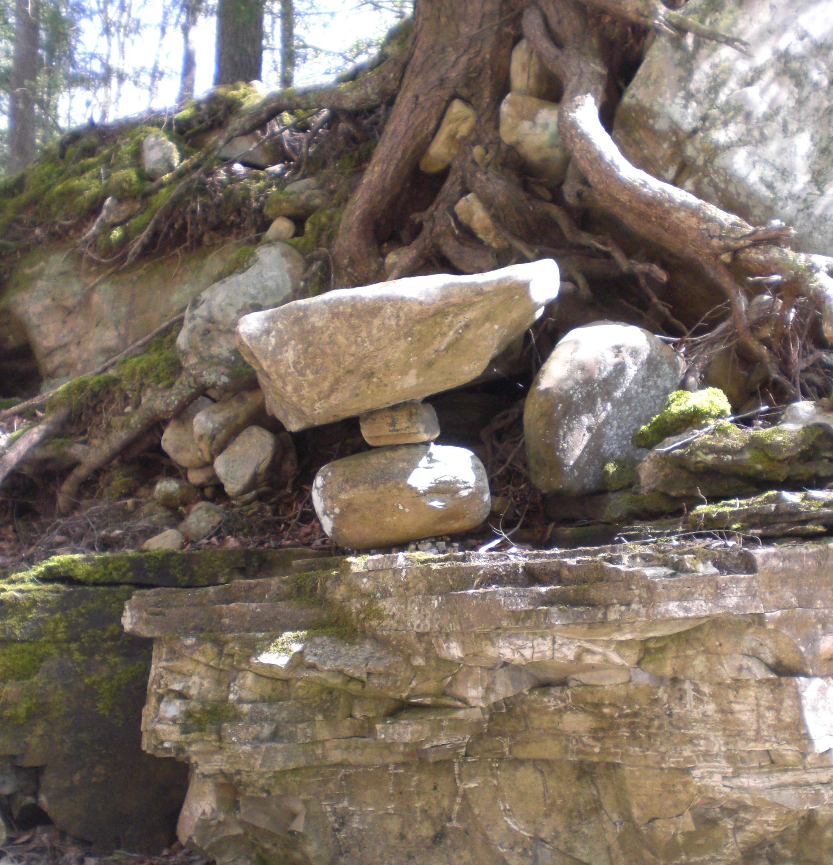 Roots&Rocks.jpg