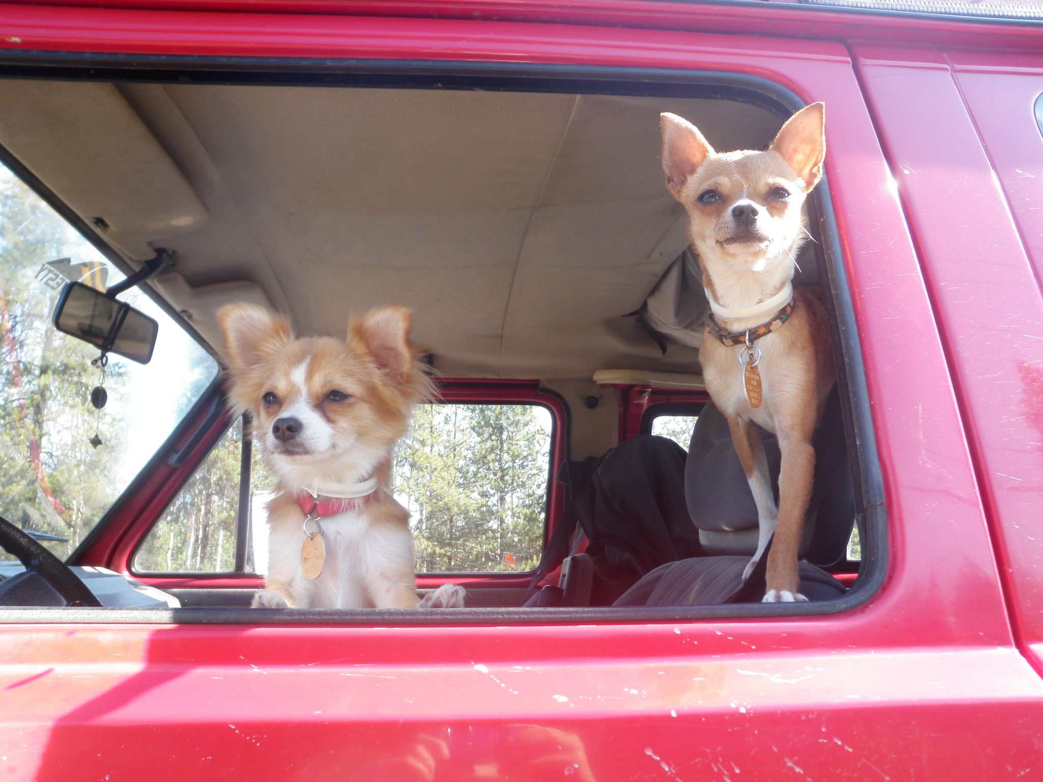 Monty & ChiChi, Worldclass Syncro Adventurers.