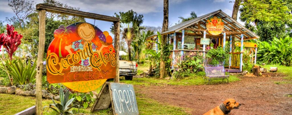 Coconut Glen's.jpg