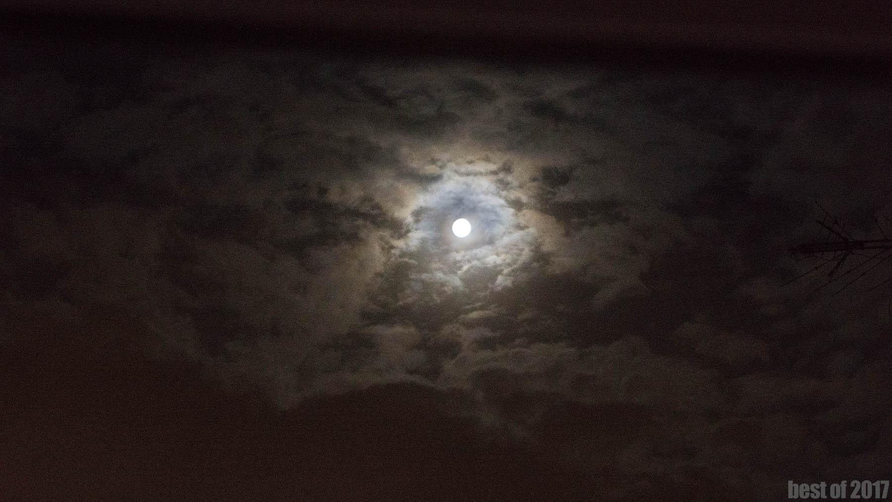 """""""Goatsenight, Moon"""""""
