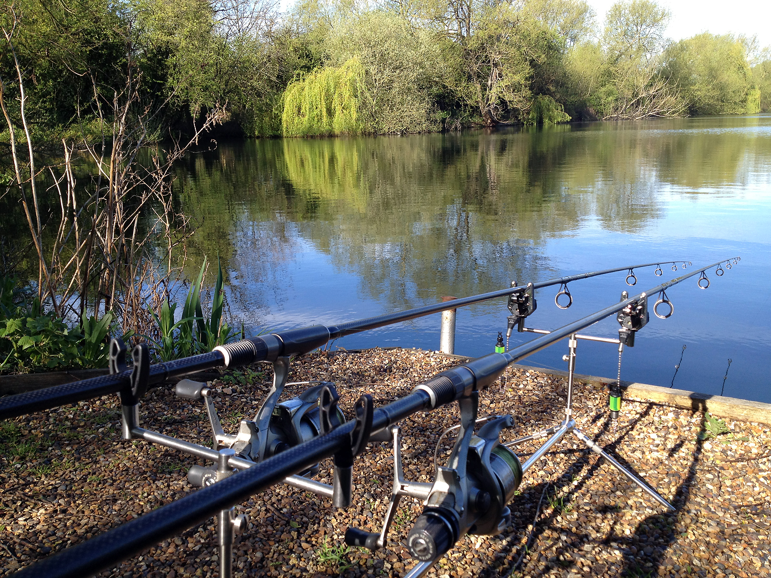 A good looking swim, plenty of features, and the odd fish crashing in the margins...