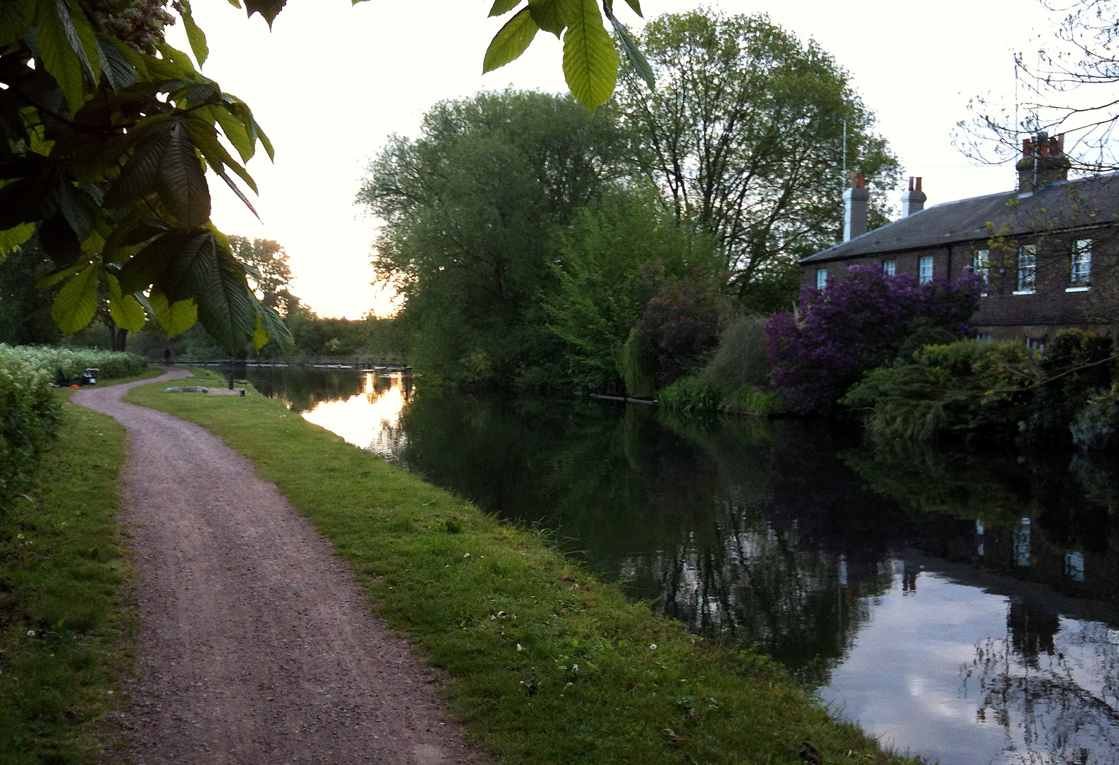 A picturesque spot, and I fancied a bait under those overhanging bushes