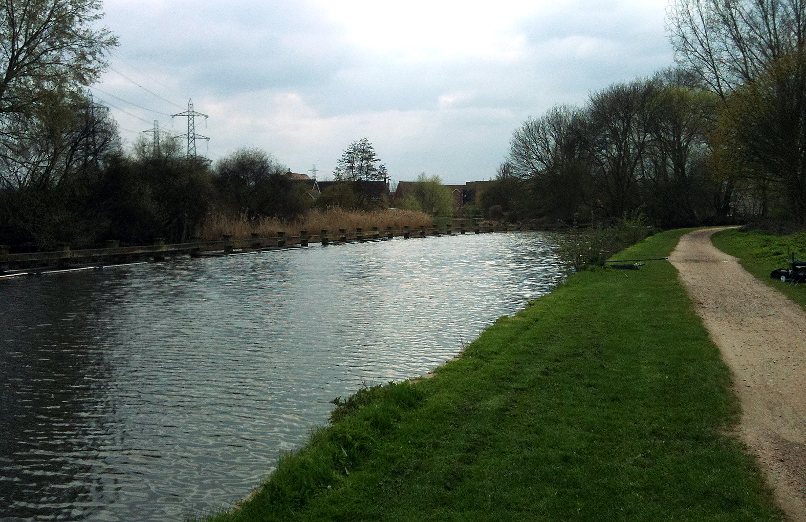 The pilings on the opposite side of the canal seemed to hold the carp