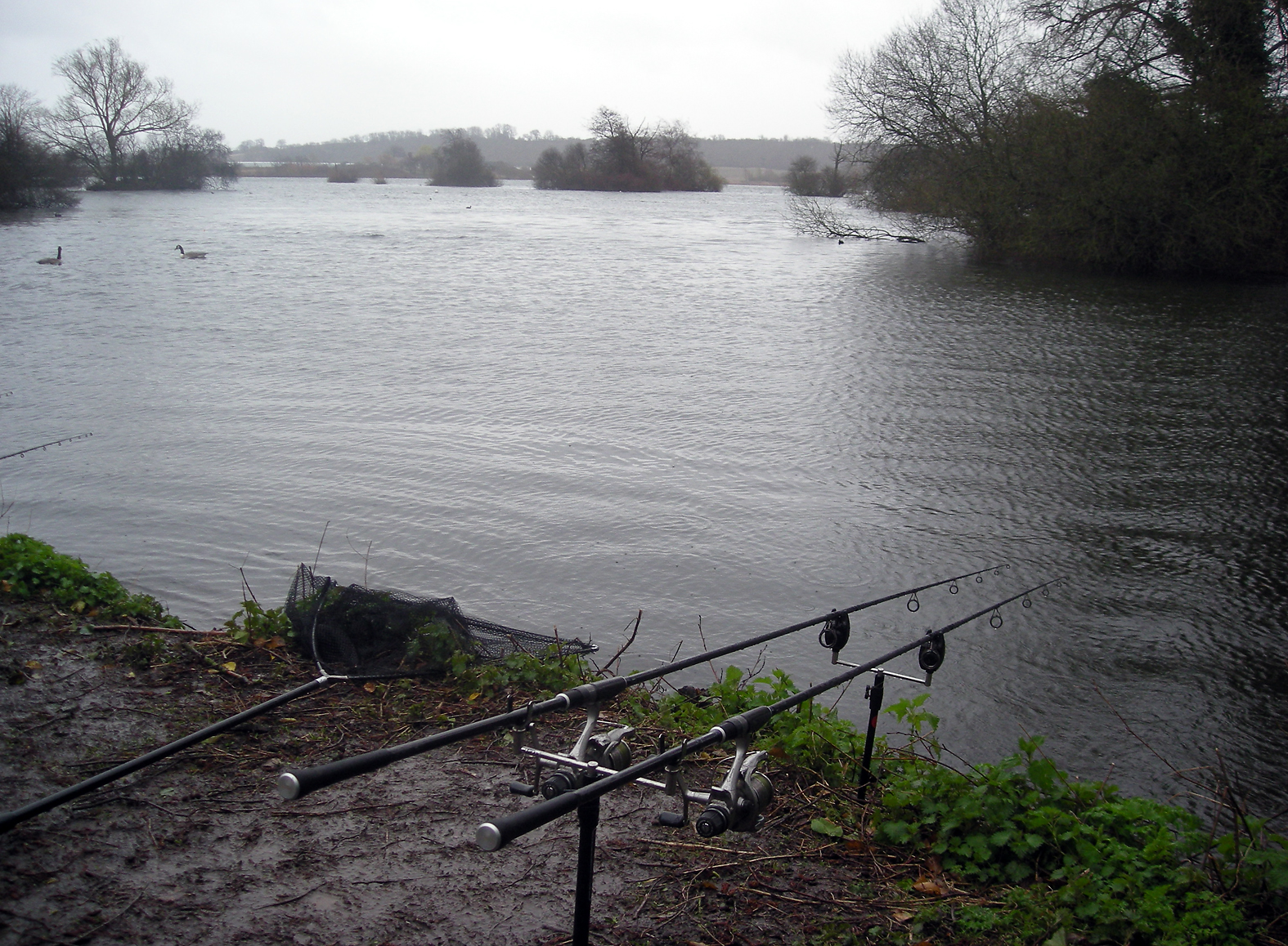 There was a big storm blowing... was watching for falling trees, not my rods!