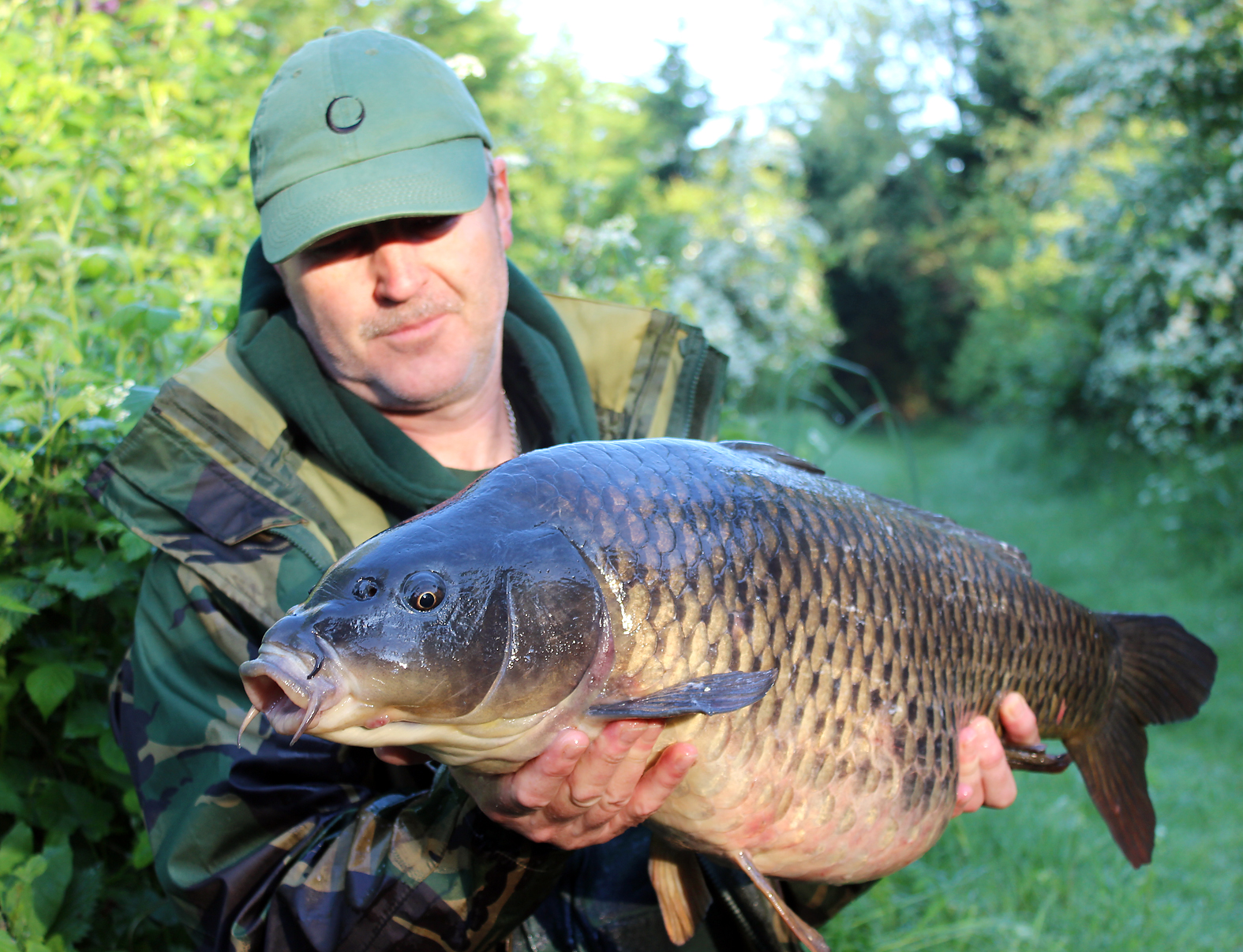 This 21lb+ common turned up at 5.30am, caught from under overhanging branches in the margin
