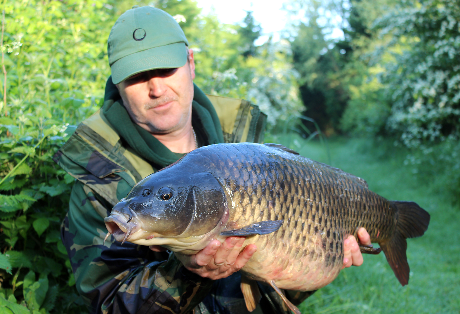 Worth all the effort? You bet! This early morning visitor obviously enjoyed the cover in the margins. 21lb 11ozs.