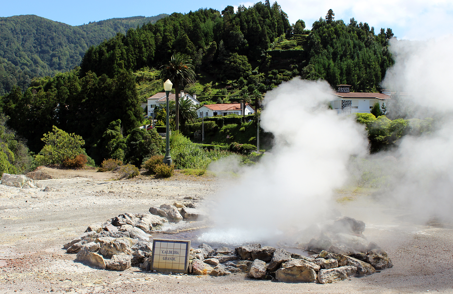 Steamin', one of the many hot water springs in Furnace valley
