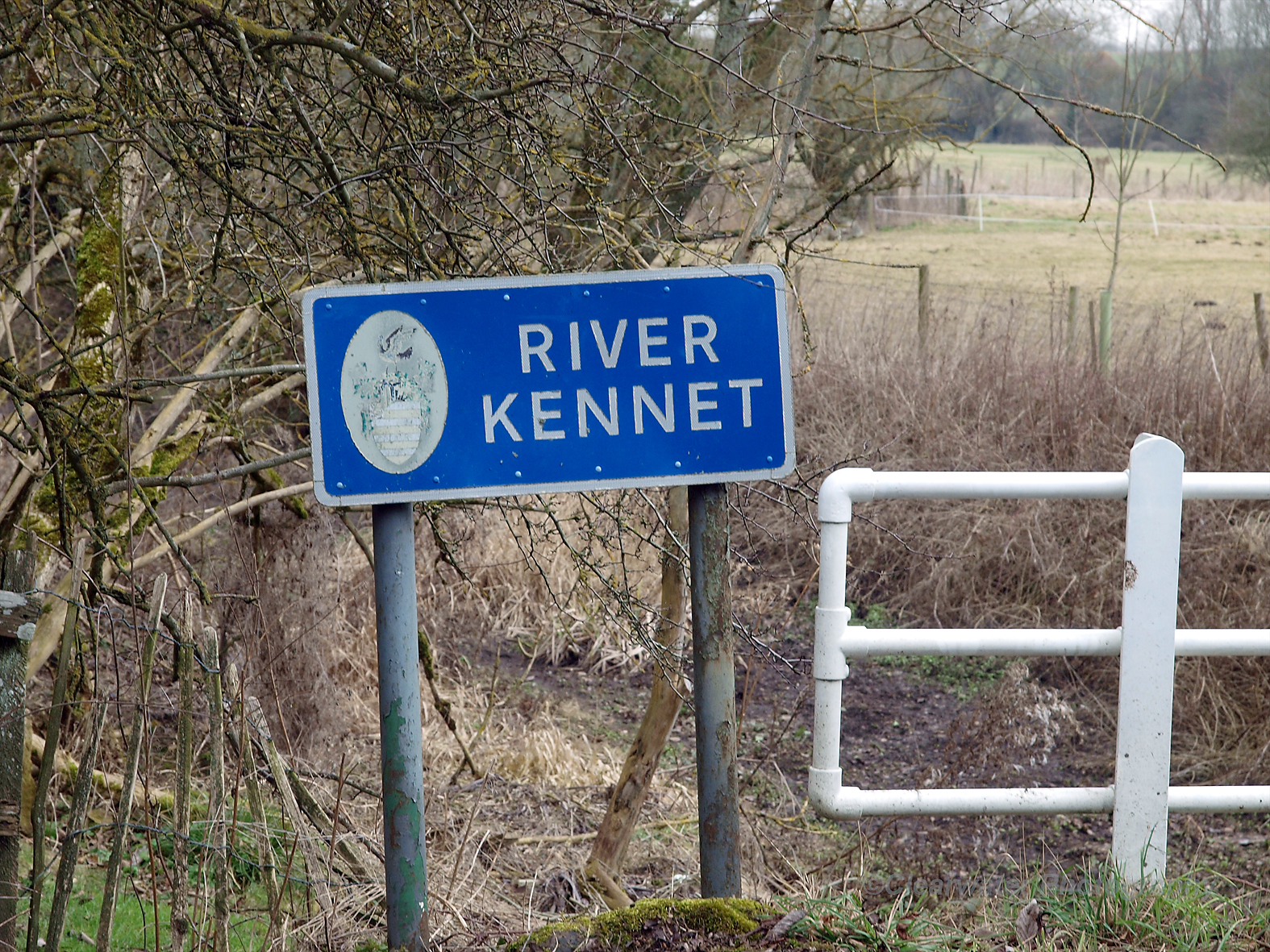 The Upper Kennet near Malborough                                                                                                                                     Picture credit:   John Sutton/  Clearwater Photography