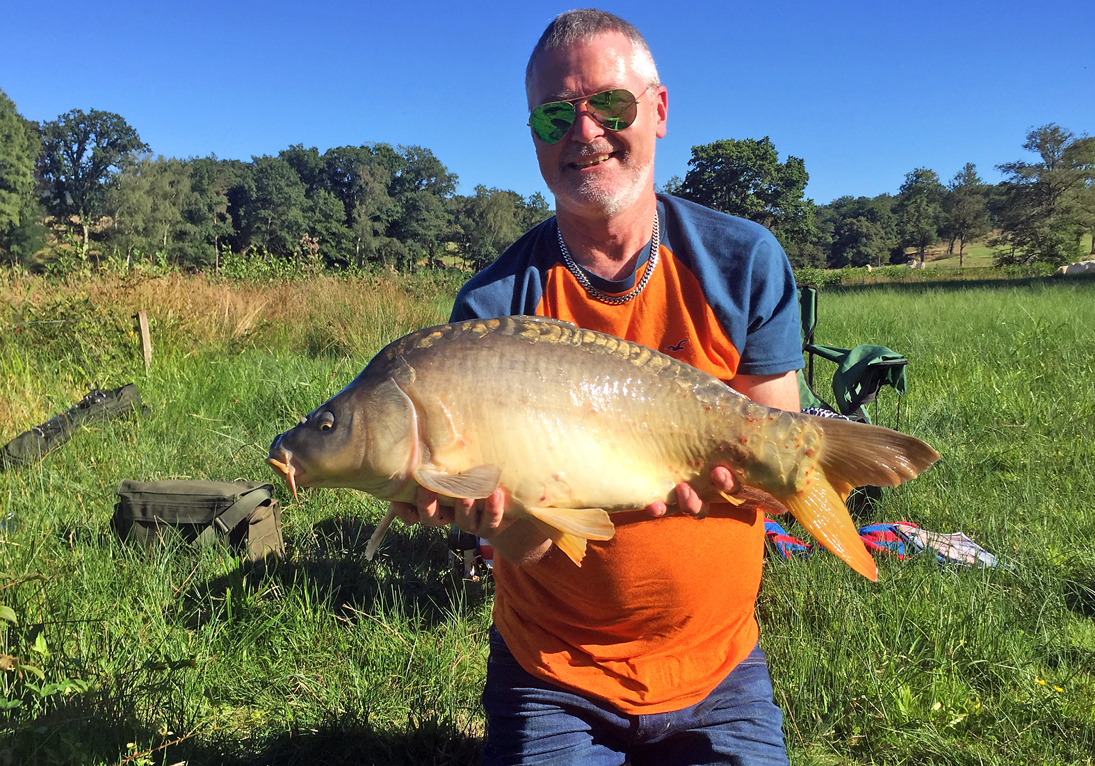 Lovely, a reasonable French mirror carp from a neglected old estate lake