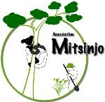 Association Mitsinjo logo.jpg