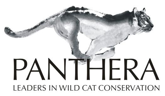 Panthera_Logo.jpg