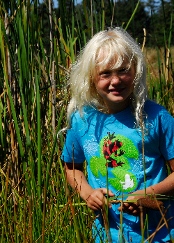 $1 for One.  Support the extraordinary work of Amphibian Specialist Group by purchasing a SpeeZees Lehmann's Poison Frog t-shirt in  Dragonfly  or  Green Apple . Made from  100% GOTS certified organic cotton .