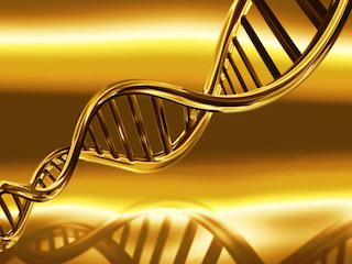 DNA small.jpg