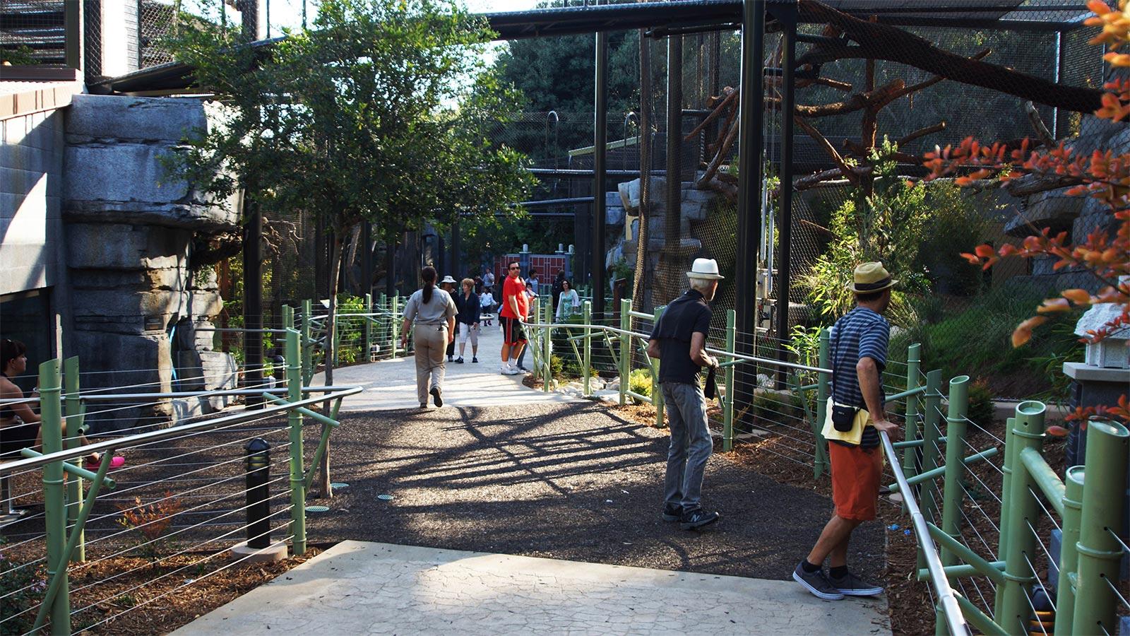 SD-Zoo-Design-1.jpg