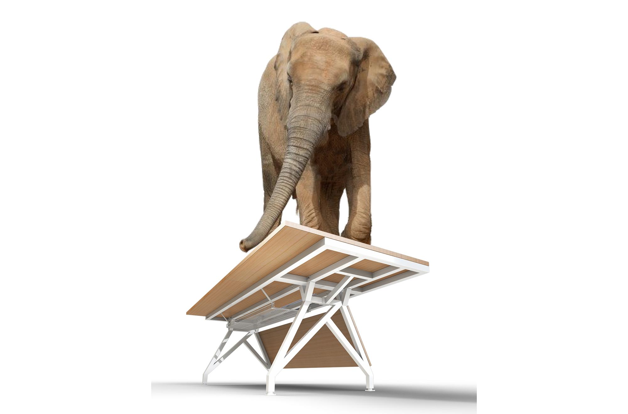 Elephant-EYhov Sn.jpg