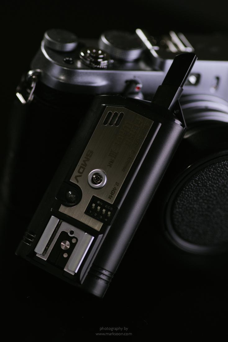 MSM_8895.jpg