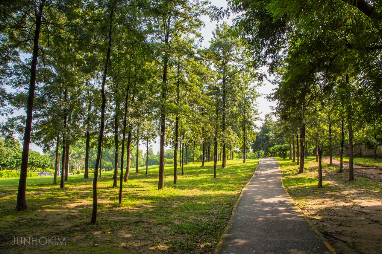 Nehru Park walk path