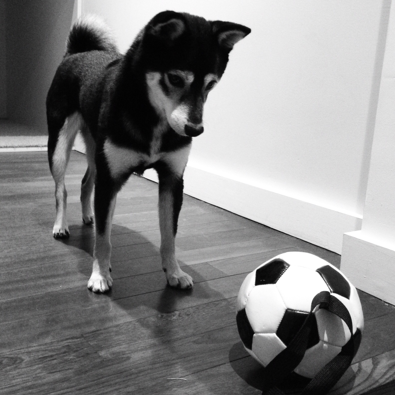 Emi and her soccer ball