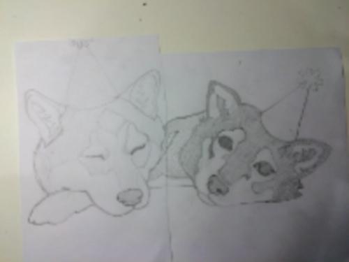 USP_Sketch.jpg
